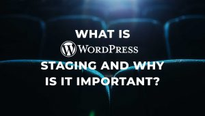 What WordPress Staging and Why is it Important?
