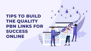 5 Tips to Build Quality PBN Links for Success Online