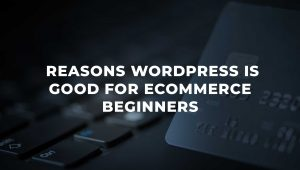 4 Reasons WordPress is Good for eCommerce Sites