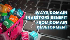7 Ways Domain Investors Benefit from Domain Development