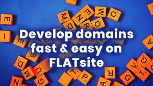 Why Domainers Develop Domains & How to Do it on FLATsite