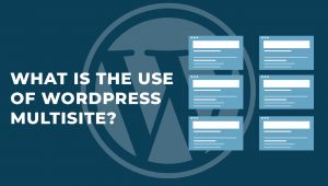 What is the use of WordPress Multisite?